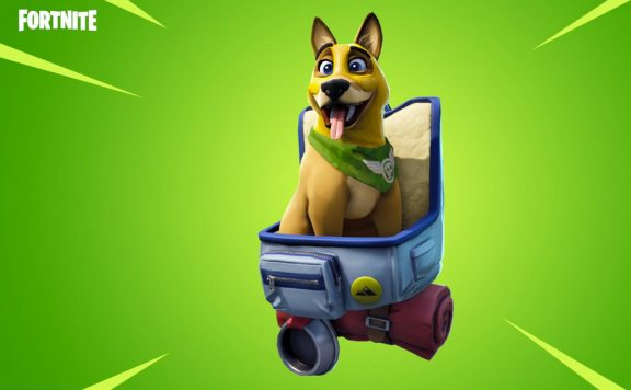 fortnite-gunner-pet-removed