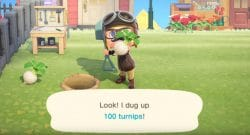 Animal Crossing New Horizons turnips guide